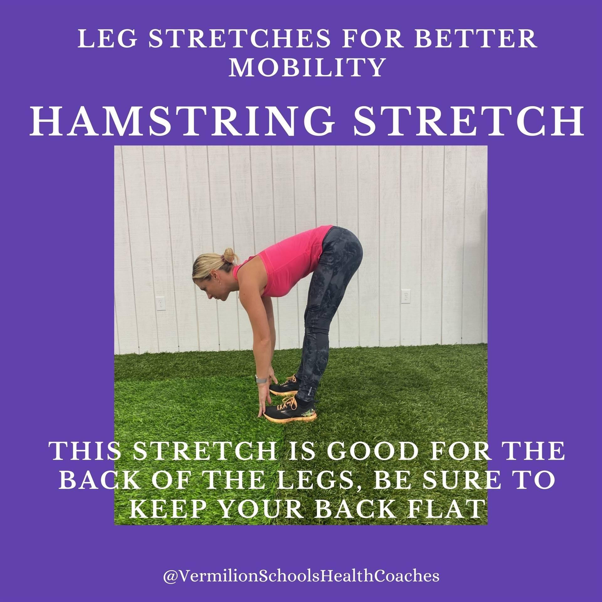 Hamstring Stretch #1