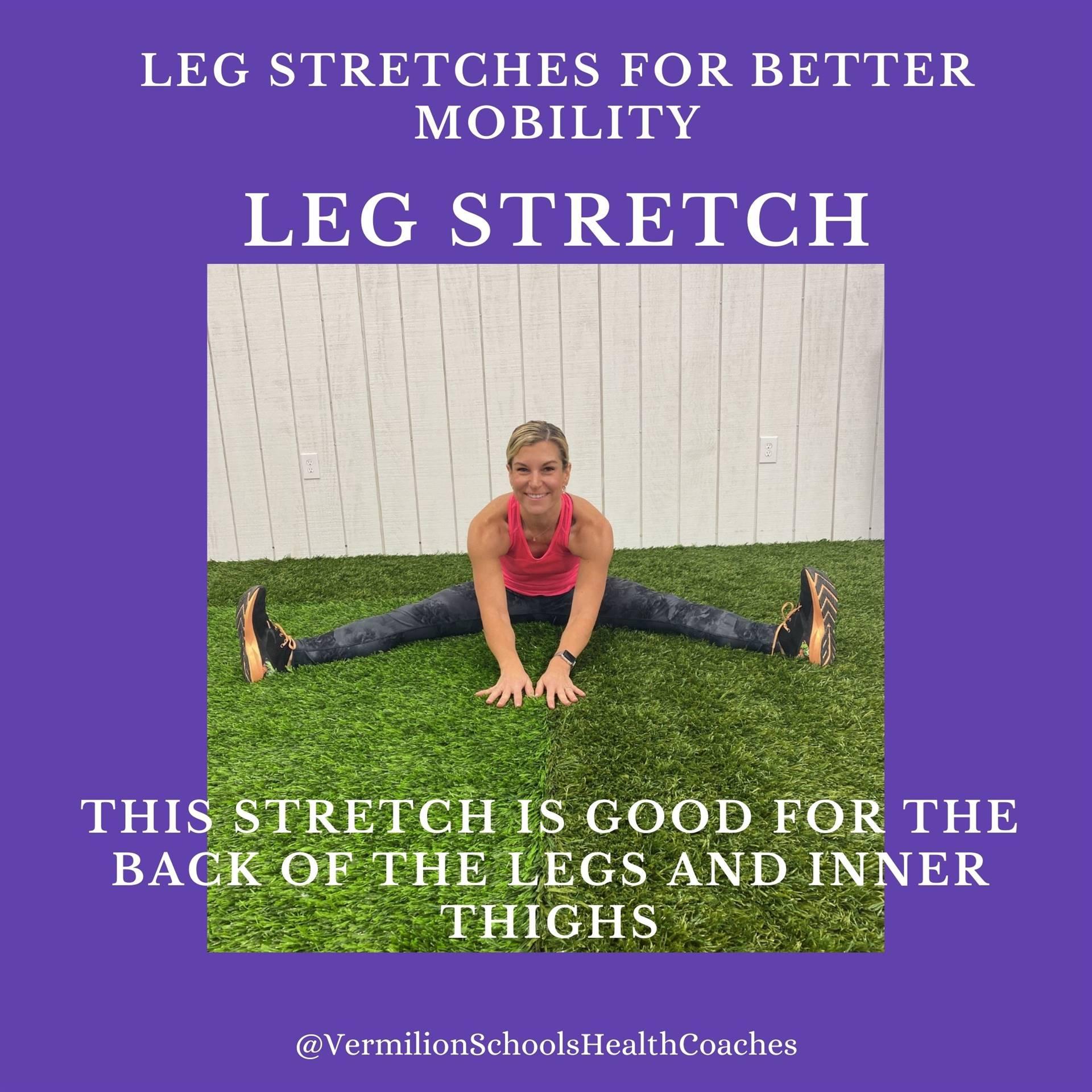 Leg Stretch #2